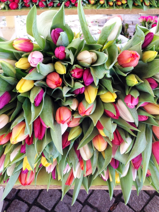 2:12:2014 Tulips at Mkt